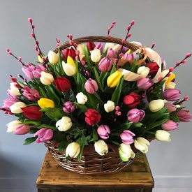 шикарная корзина с тюльпанами
