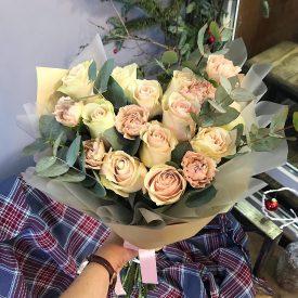 розы пинк мондиаль