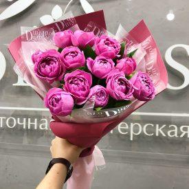 пионы розы